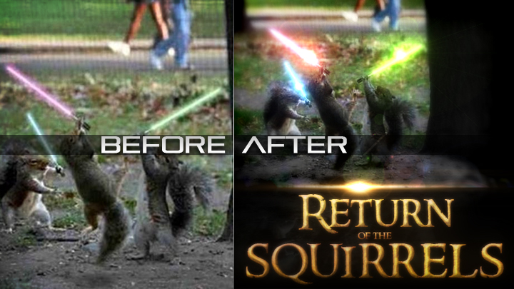 P.S. | Return of the Squirrels